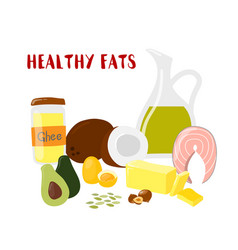 Food with healthy fats and oils banner isolated vector