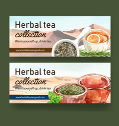Herbal tea banner design with rosemary peppermint vector