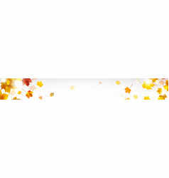 horizontal banner with autumn leaves vector image