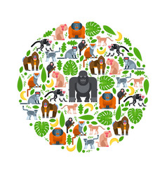 tropical apes and monkeys in round frame vector image