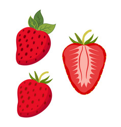 set of berries whole strawberry slices of berry vector image vector image