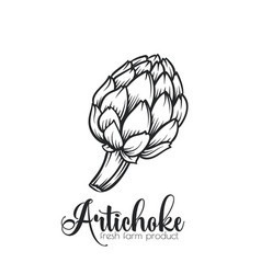 Hand drawn artichoke icon vector