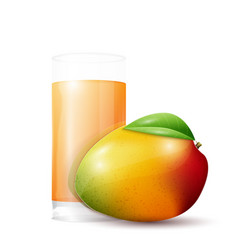 Mango and glass of juice vector