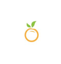 Orange face fruit and pulp for logo design vector