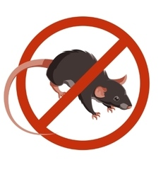 Rat forbidden sign icon vector