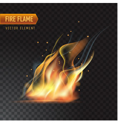 realistic burning fire flame effect with vector image