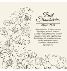 Strawberries brunch vector