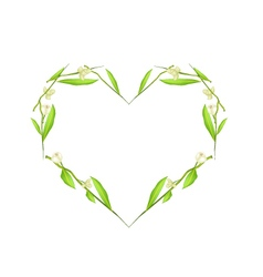 Ylang ylang flowers in heart shape frame vector