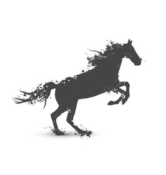 Abstract Ink Splashes Horse vector