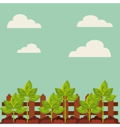 Green plant growing vector