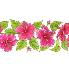 hibiscus pattern vector image
