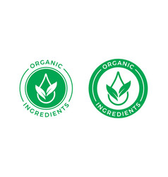 organic ingredients green leaf water drop label vector image