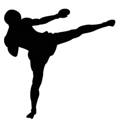 Roundhouse kick outline vector