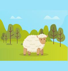 Sheep stands on green grass cartoon animal vector