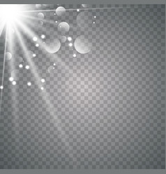 sunlight on a transparent background vector image