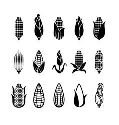 fresh corn harvest icons set vector image vector image