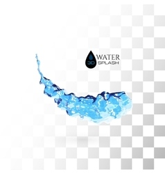 Blue 3D water splash isolated on white vector image vector image