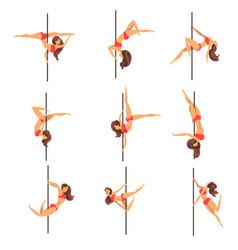 young pole dance women set beautiful pole dancers vector image