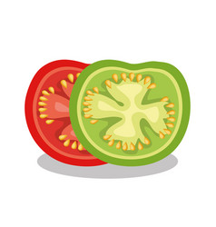fresh slice tomatoes icon vector image
