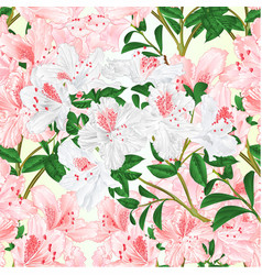 Seamless texture rhododendron light pink vector