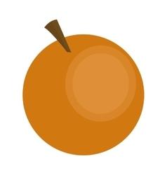 Whole orange icon vector