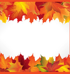Autumn leaves seamless border fall maple leaf vector
