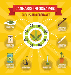 cannabis infographic concept flat style vector image