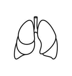lungs - icon on white background vector image vector image