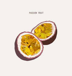passion fruit passion slice hand drawn vector image