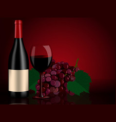 perfect still life red bottle wine grapes and vector image