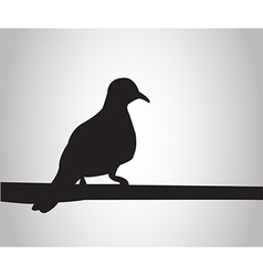 pigeon sits on a pole silhouettes on white bac vector image