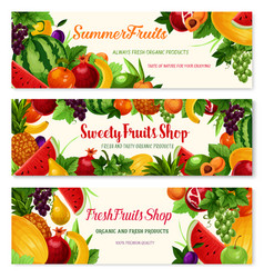 fresh fruit cartoon banner for food drink design vector image vector image