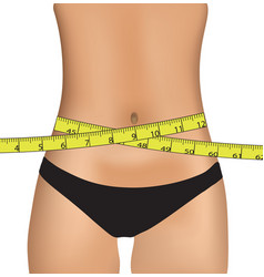 woman belly with measuring tape vector image