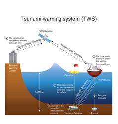 tsunami warning system process vector image vector image