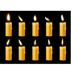 Animation candle flame romantic holiday animated vector