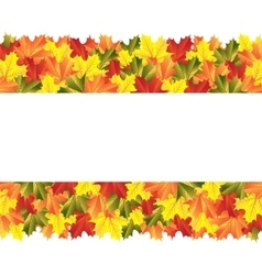 Banner with autumn maple leaves vector image