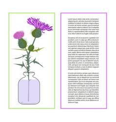 Card with thistle flower vector