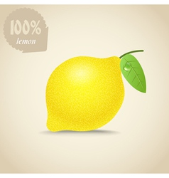 Cute fresh lemon vector image