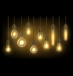 hanging lamps or light bulbs on wire vector image