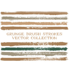 long ink brush strokes isolated design elements vector image
