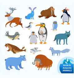 set funny arctic and antarctic animals vector image