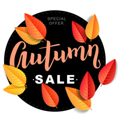 Autumn sale composition vector