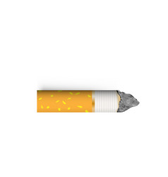 cigarette butt nicotine addiction vector image