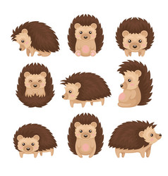 Cute hedgehog in various poses set prickly animal vector