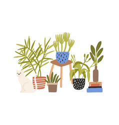 hygge composition hand drawn houseplant in vector image