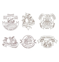 Retro farm fresh labels badges and design vector