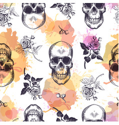Seamless pattern with human skulls and roses drawn vector