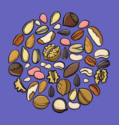 set drawing nuts vector image