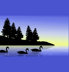 Swan on the lake with tree landscape silhouettes vector