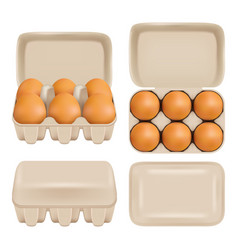 egg carton consumer pack set vector image vector image